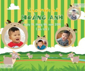 Thiết kế backdrop sinh nhật cho bé trai, bé gái tại hcm, hn, toàn quốc.