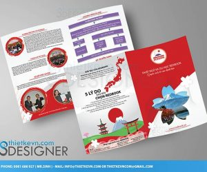Thiết kế tờ rơi quảng cáo giá rẻ ĐỘC – ĐẸP – LẠ cần xem ngay!